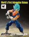 Super Saiyan Blue Vegetto - Event Exclusive Item